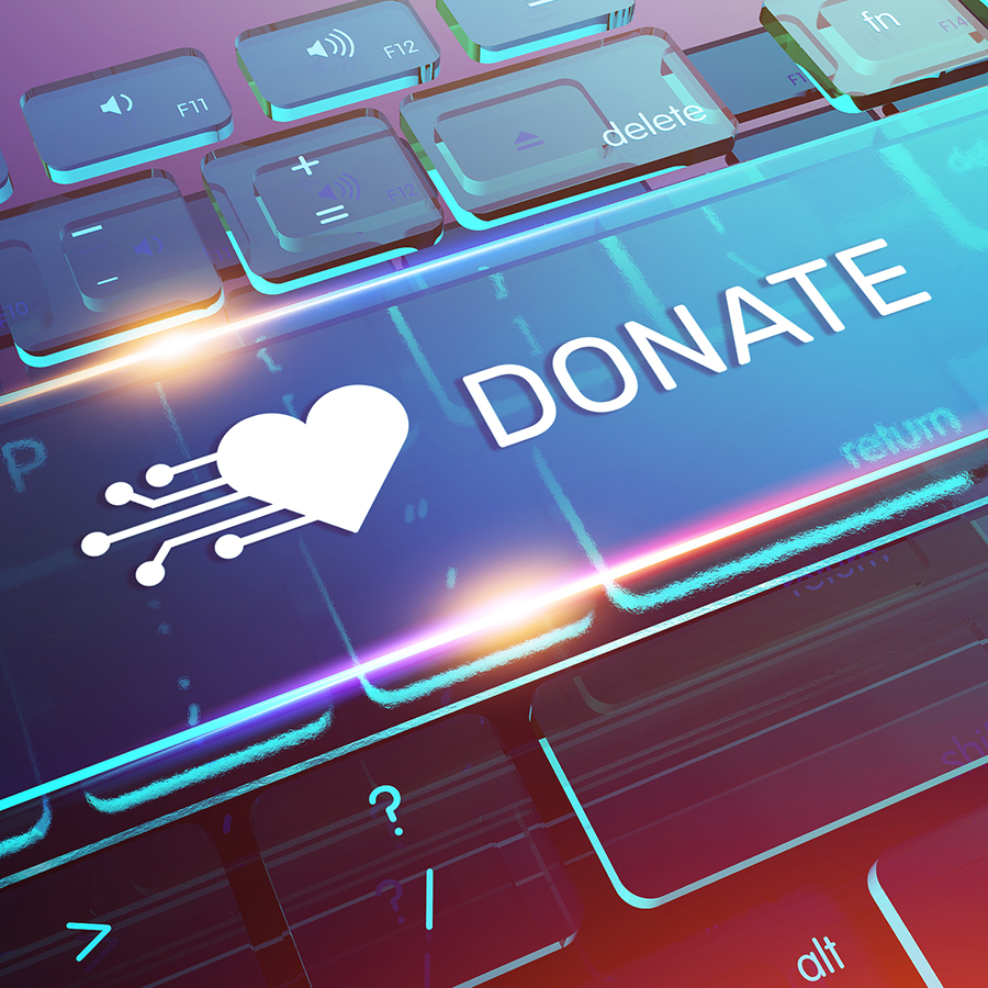 picture of donate button on computer