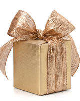 Receipting - What Types of Gifts May be Receipted
