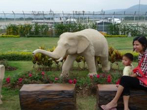 A mommy or daddy elephant