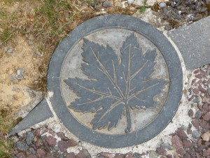 Maple leaf stone