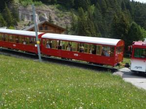 Cog wheel train