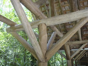 Wooden beams supporting a bridge