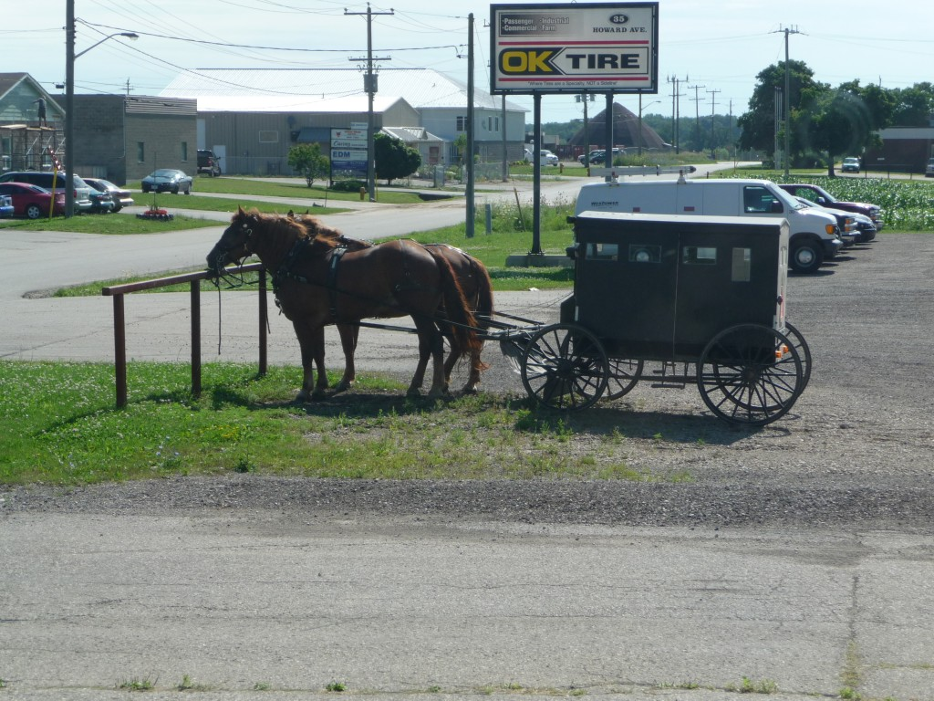 Picture of horse & buggy in 2008